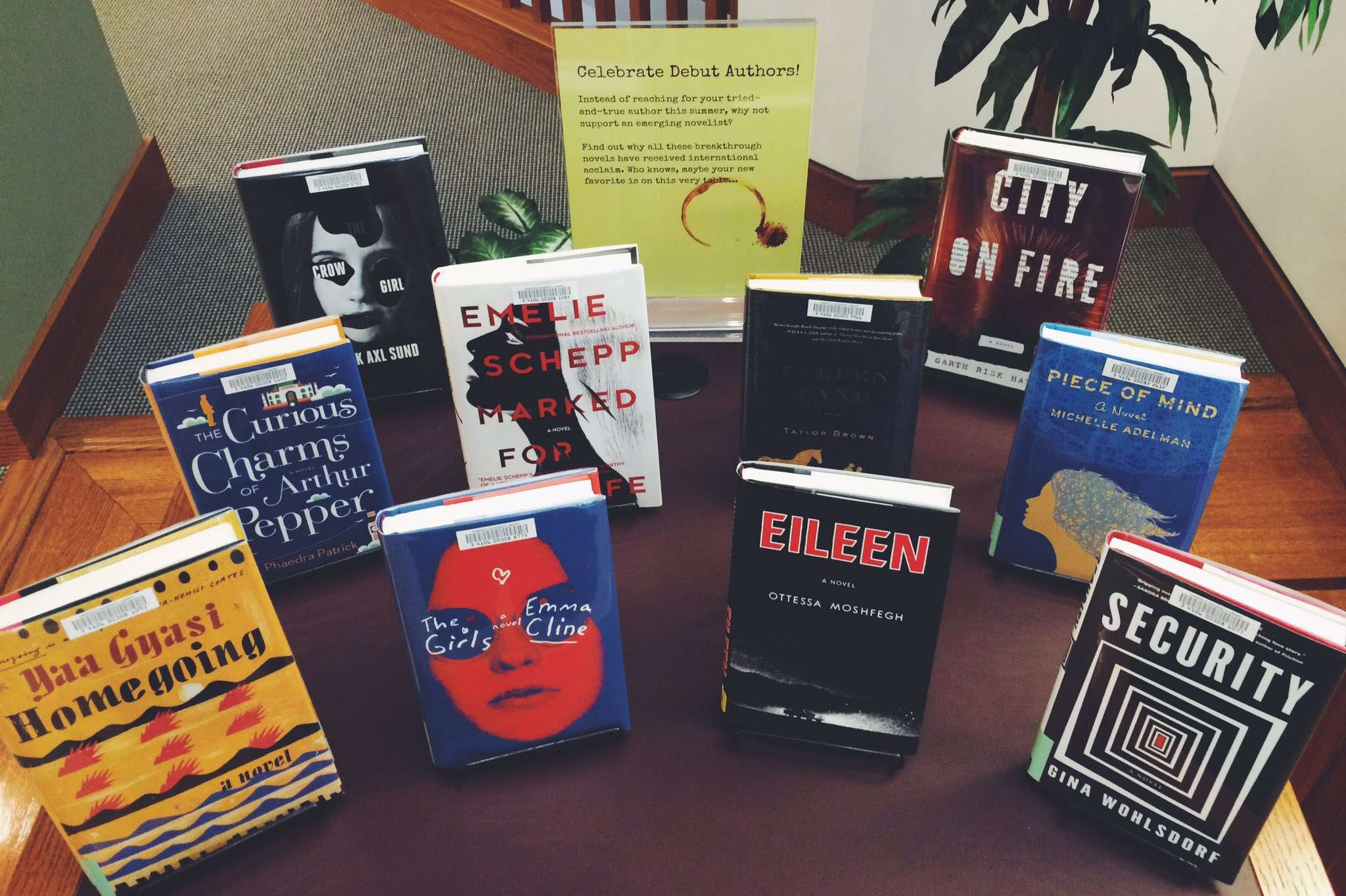 Debut Author Book Display